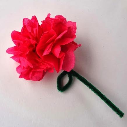 tissue-paper-flower-tutorial1.jpg