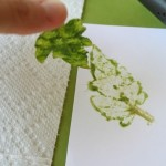 DIY Leaf Stamp